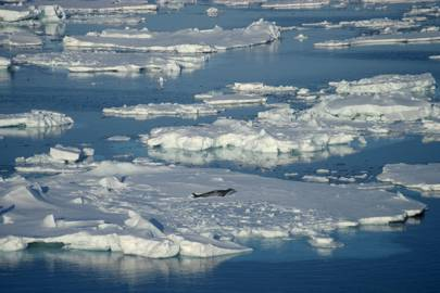 The Ross Sea, Antarctica