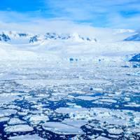 Antarctica Peninsula, Pleneau Island