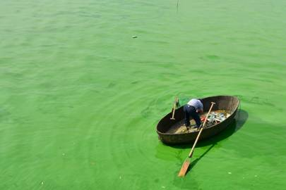 A fisherman boats in Chao Lake where thick cyanobacteria gather on the surface on August 5, 2015 in Chaohu, Anhui Province of China.