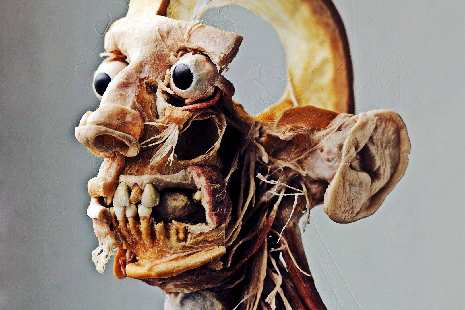 The Plastinarium of Dr von Hagens | WIRED UK