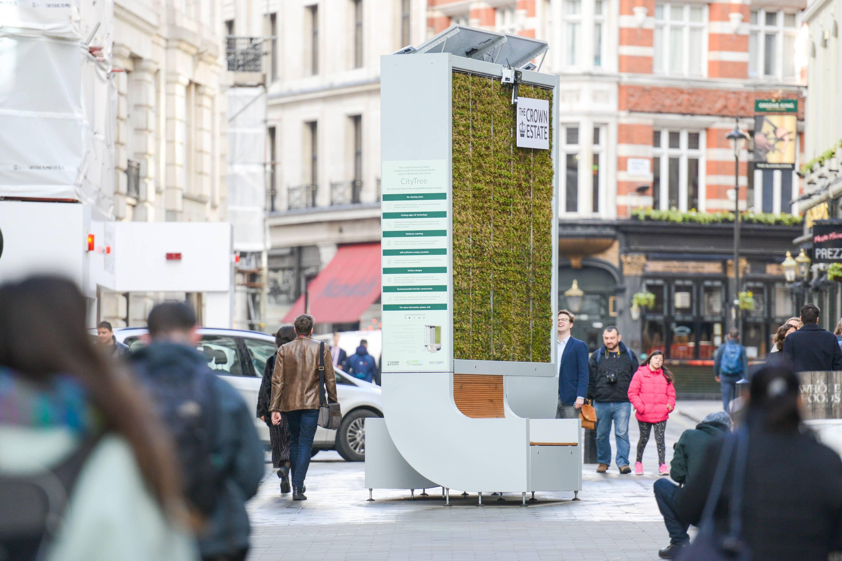 Resultado de imagen para city tree