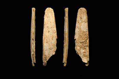 "The bone ""lissoirs"" used for treating leather"