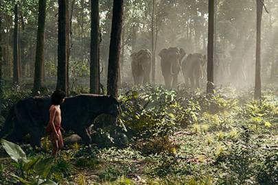 Neel Sethi's Mowgli walks alongside the computer-animated Bagheera (voiced by Ben Kingsley)