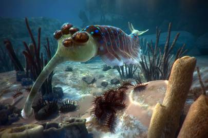 Opabinia, 5 eyes and a trunk,  a 450 million years old creature you come face to face with, with David Attenborough in a VR journey