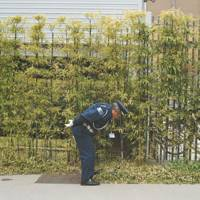 A security guard bends over to pick up some rubbish in Kyoto