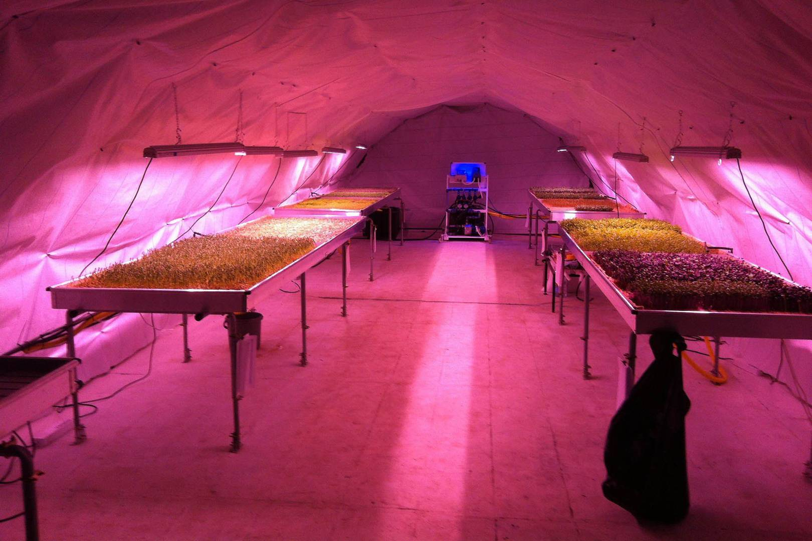 Vast Underground Bomb Shelter Reappropriated By Urban Farmers Wired Uk Running Electrical Wire