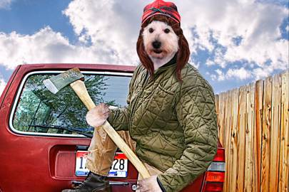 """A redneck dog with an axe in his hands"""