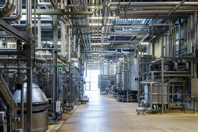 Processing: One-and-a-half million litres of milk are piped through this network of stainless-steel pipes every day after lorries transport it from the farm.