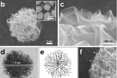 The pom-poms of graphene were created using a process similar to deep-frying