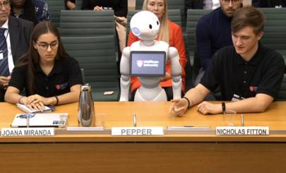 We need to have a very serious chat about Pepper's pointless parliamentary pantomime