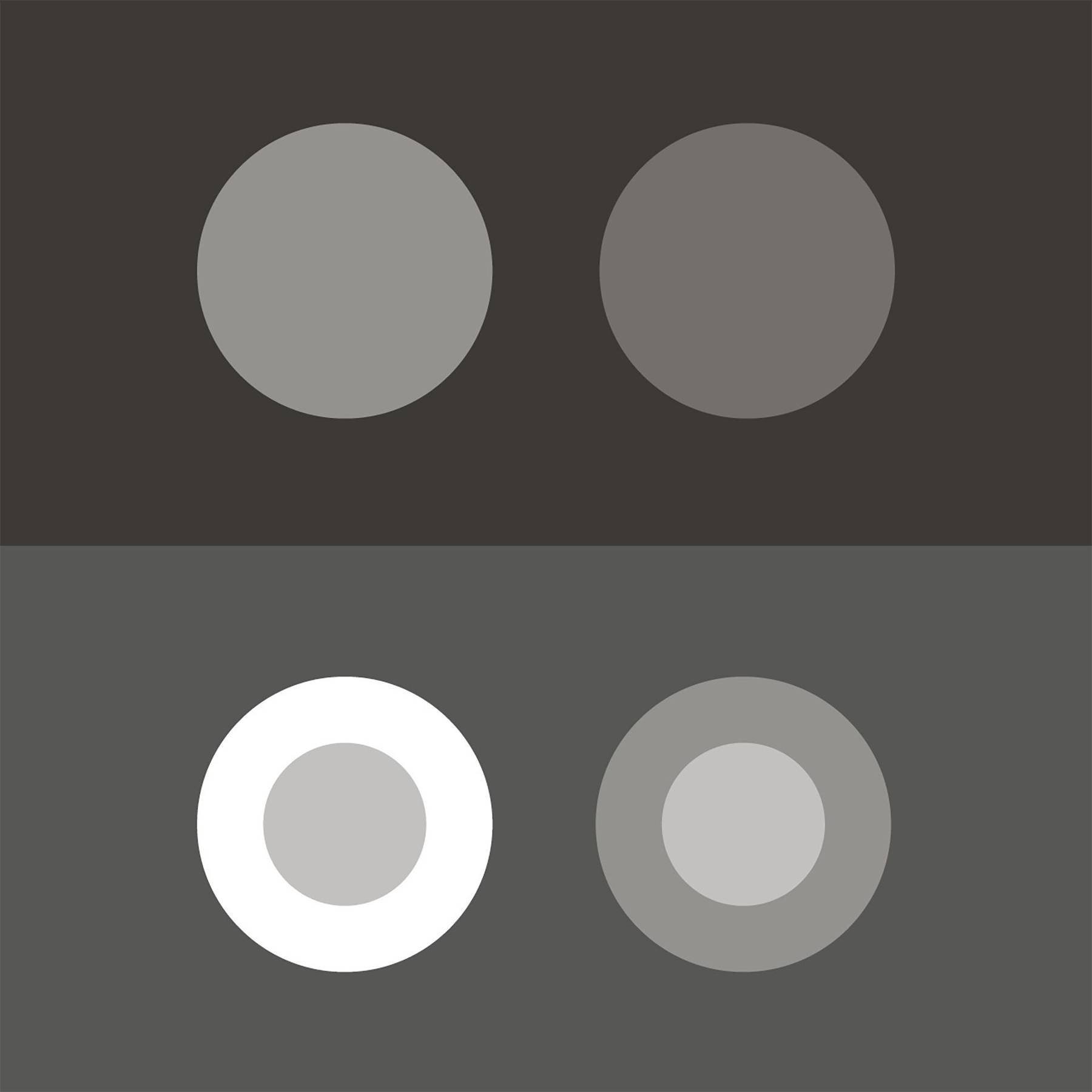 Optical Illusions And How The Strange Science Of Perception Makes Us Uk Wiring Colours White Question Reality Wired