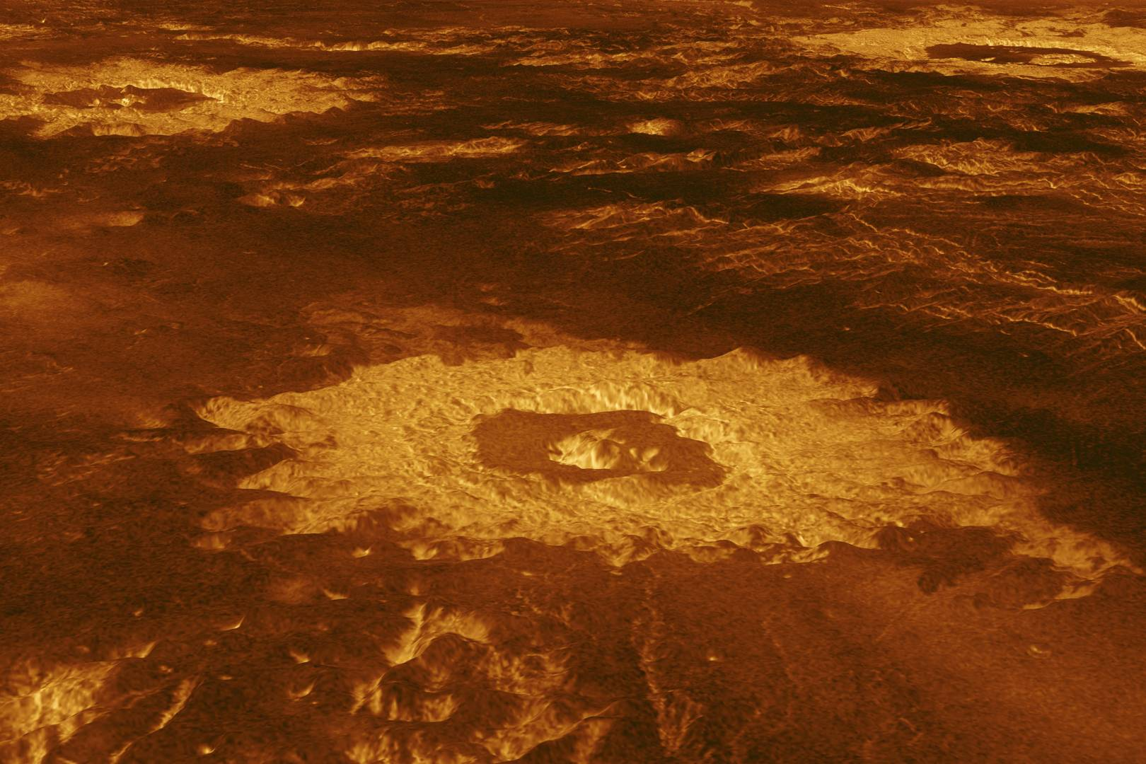 This is what life on Venus might look like – and how we'll find it