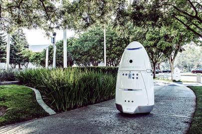 Meet K5, California's adorable robot security guard
