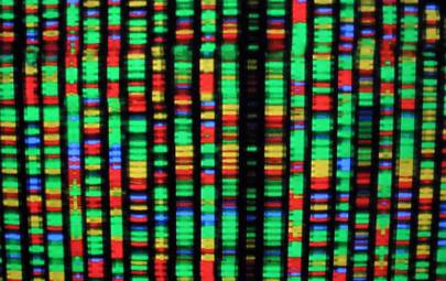 A movie, operating system and Amazon gift card have been stored in DNA
