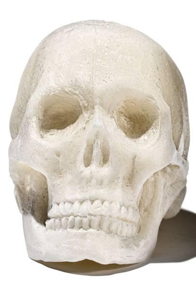 Bone substitute