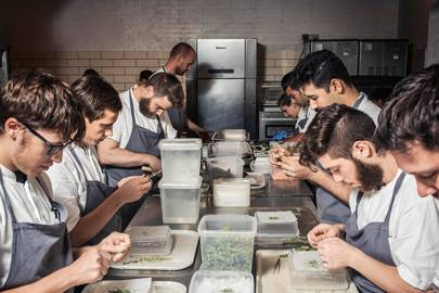 Noma's taste of tomorrow: creating the future of food