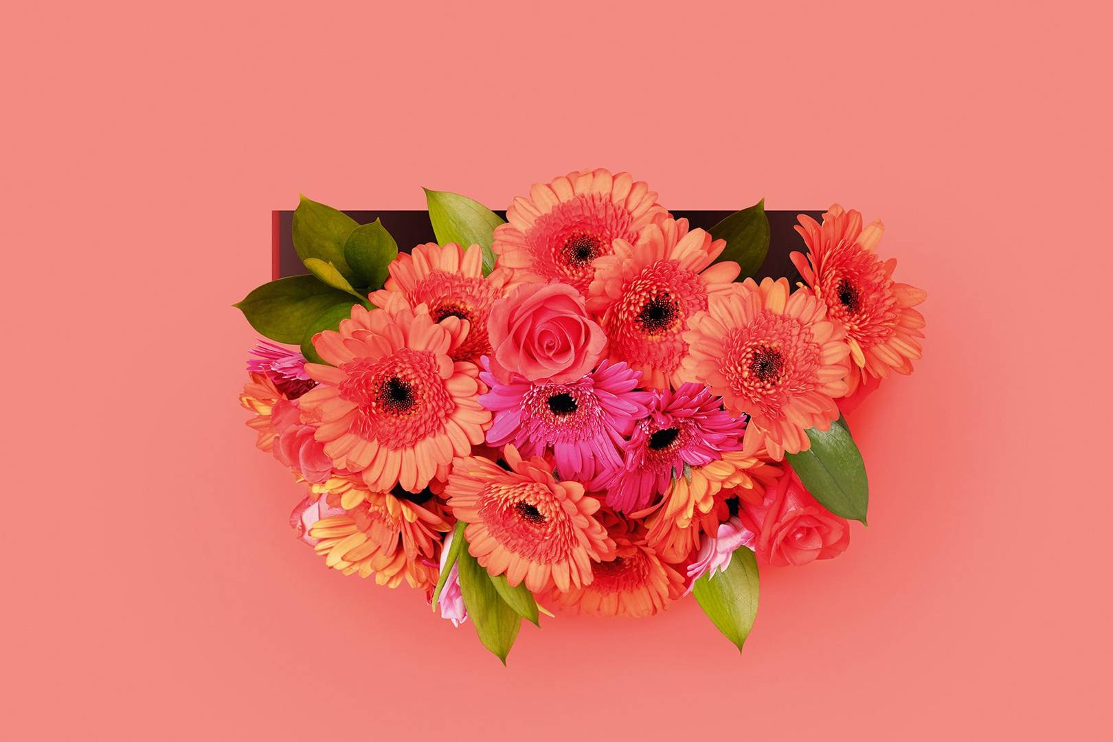 Flat Packed Bouquets Are Giving Florists A Digital Shake Up Wired Uk
