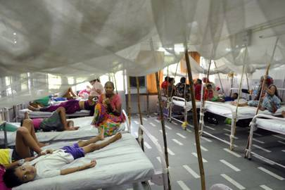 The dengue fever ward at the Hindu Rao Hospital in New Delhi, India. The WHO estimates that 500,000 people are hospitalised with severe dengue every year, many of them children. 2.5 percent of that number die