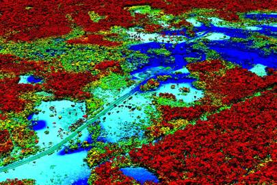 Logging the Amazon