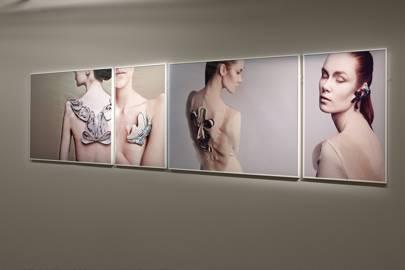 Biological Atelier, Amy Congdon