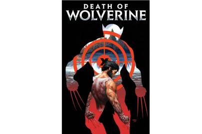 Storm Wolverine