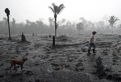 Brazilian Amazon Fires August 2019