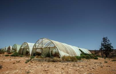 Worsening drought conditions are having a major impact on farmers in South Africa's Western Cape region