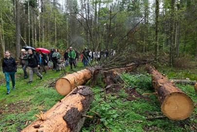 A protest against the cutting of trees in the Bialowieza Forest in Stara Bialowieza, Poland, on August 13, 2017