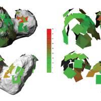 67P lobe model