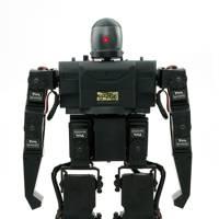 RoboPhilo Humanoid Robot RTW