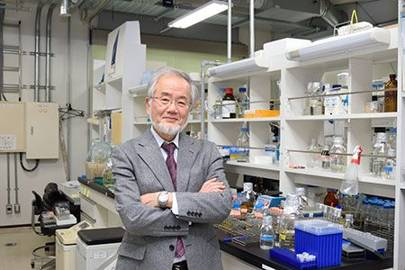 Nobel Prize winner Yoshinori Ohsumi is pictured in his laboratory