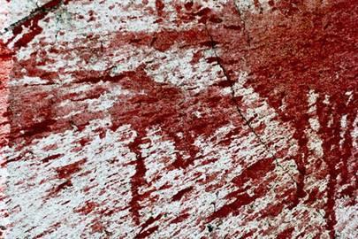 Ebola mathematics stark warning of disease's spread