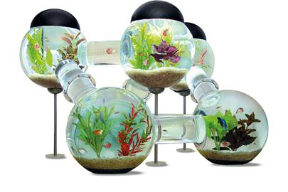High-end aquarium
