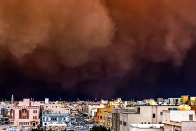 Kuwait is fighting back against sandstorms -- with trees