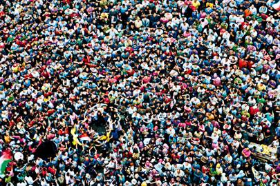 Crowds of humans take on similar formations as animals, regardless of size of intelligence