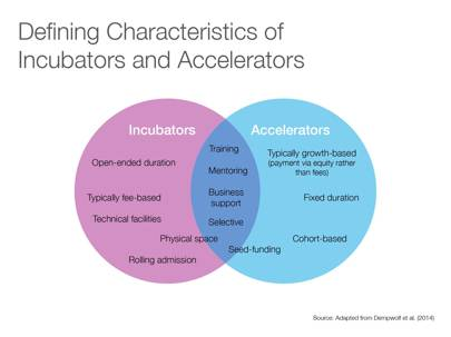 Defining characteristics of incubators and accelerators