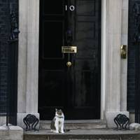 Take a virtual tour of 10 Downing Street in Google Street View