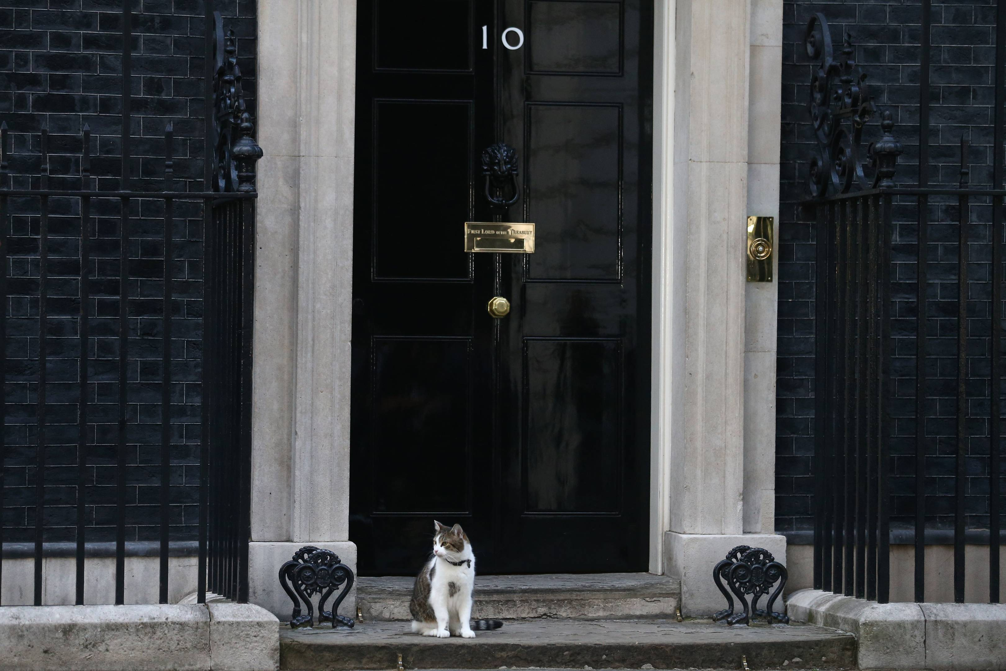 10 Downing Street is now available on Google Street View | WIRED UK