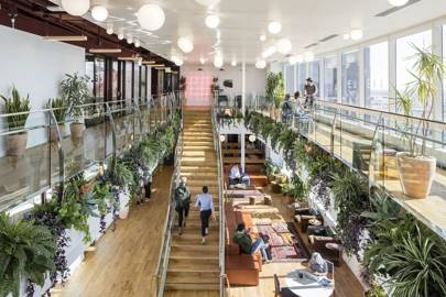 How WeWork became the most hyped startup in the world