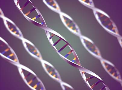 Genetically-modified humans: what is CRISPR and how does it work?
