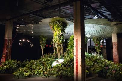 Growing underground: the Lowline urban garden buried in New York's catacombs