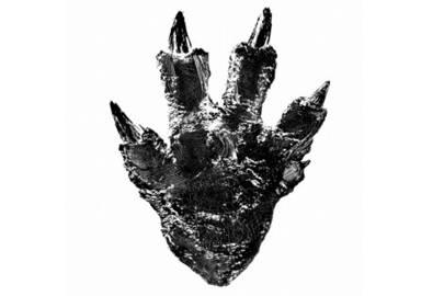 Godzilla's return to Japan helmed by 'Evangelion' director