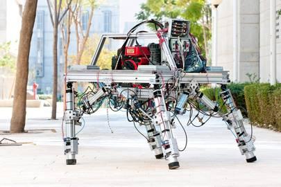 Robot mule